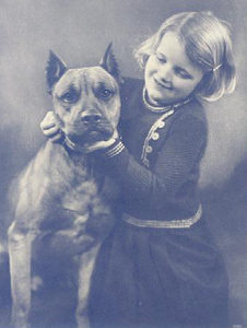 What Were Pit Bulls Bred For?