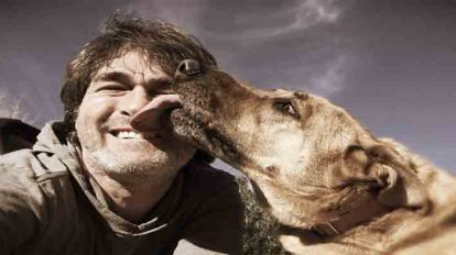 dogs lick human face